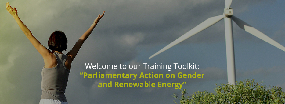 This toolkit has been developed to facilitate trainings on gender-responsive energy laws, policies and budgets for parliamentarians. It offers comprehensive introductions to the core issues and provides exercises, model parliamentary questions, suggested parliamentary action points and a list of relevant resources.