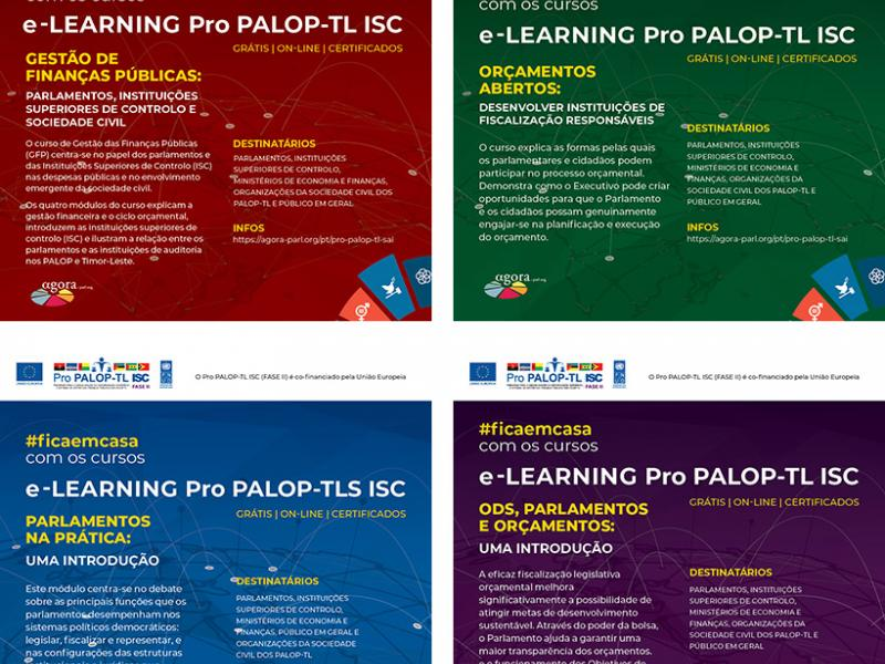 Cursos e-learning Pro PALOP-TL ISC